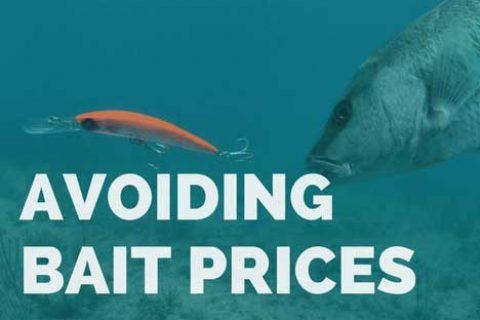 Avoiding Bait Pricing