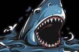 shark-5135934_640